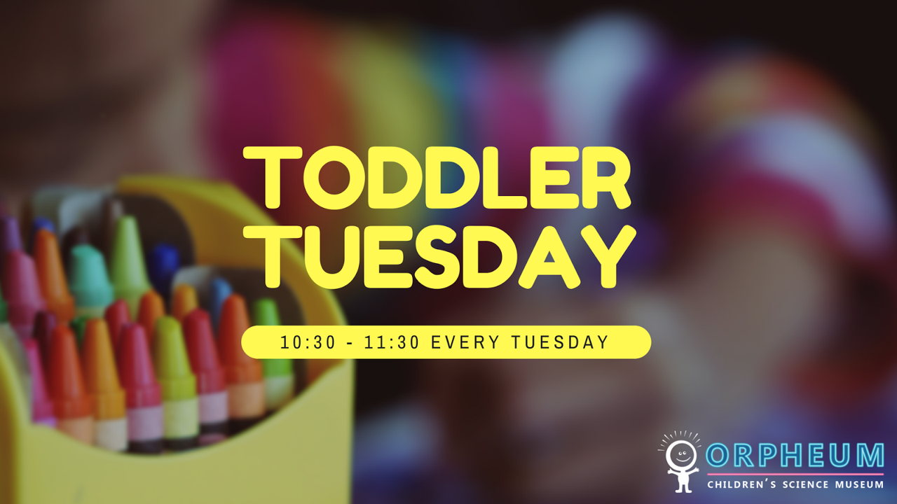 Toddler Tuesday